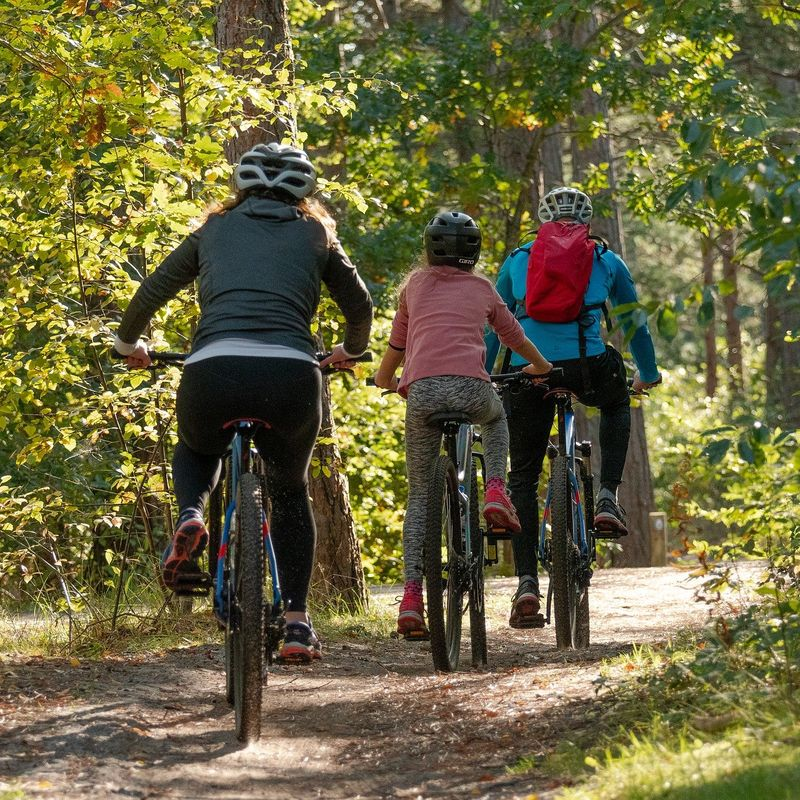 Why we should exercise as a family
